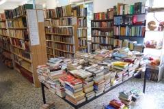 panoramica-romanzi-by-Mercatino-la-Pulce-Cocquio